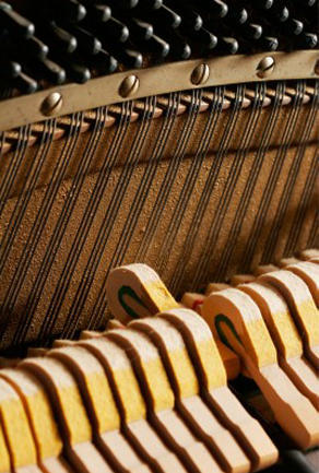 Piano Restoration Services