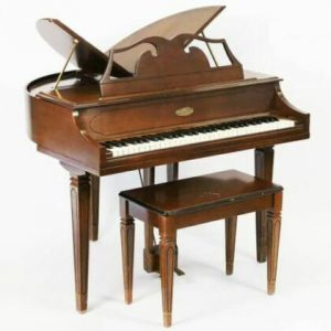 Vintage Wurlitzer 270 Electric Piano (200A sound)