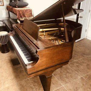 """1977 chickering 5' 7"""" Med Walnut Grand piano, Pristine"""