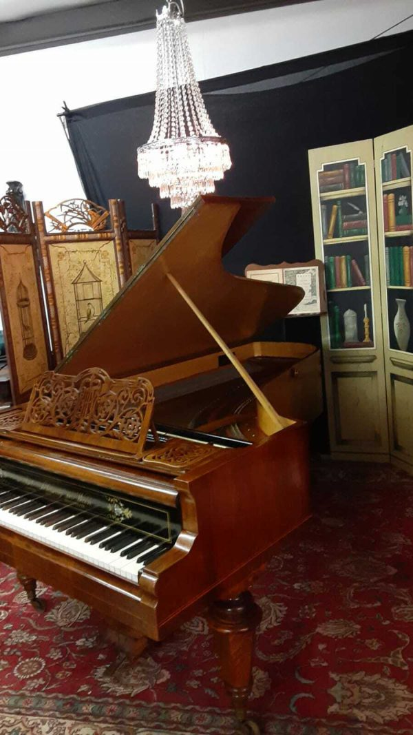 Amazing School of Bosendorfer Grand piano