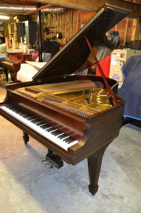 """Steinway """"M """" Grand Piano"""
