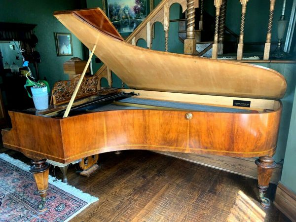 Amazing School of Bosendorfer Yamaha's Grand piano
