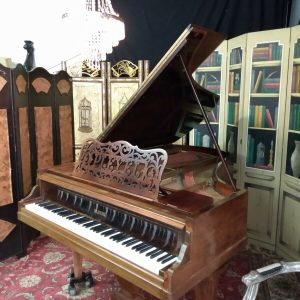 Rare and beautiful PLEYEL grand piano (free Yamaha key felt cover)